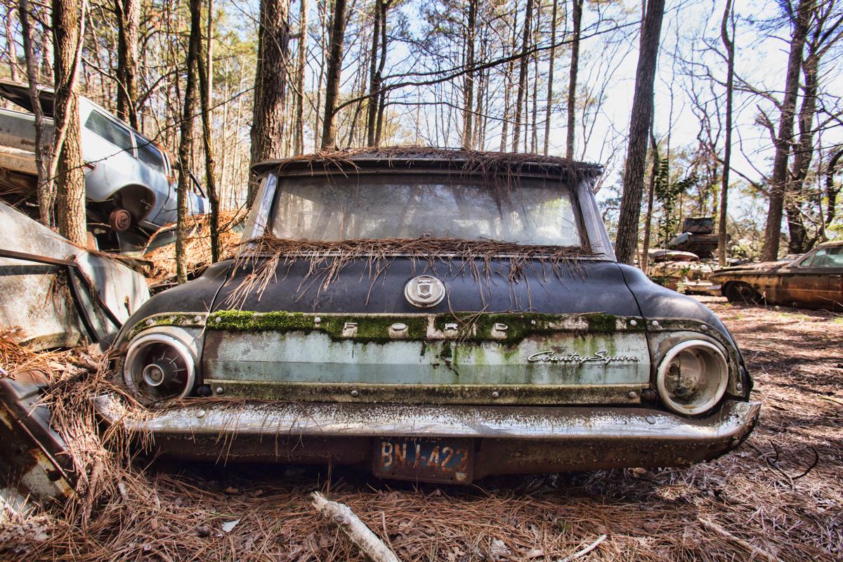 ford rear